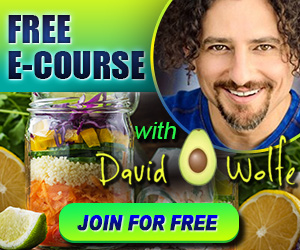 DavidWolfeIntro-ToLiving-Nutrition300x250